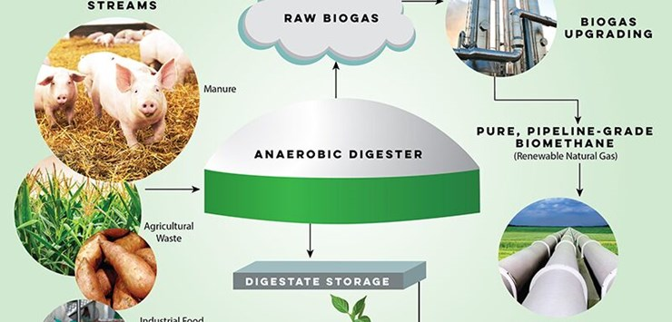 Construction starts on $100M US biogas facility - World Construction
