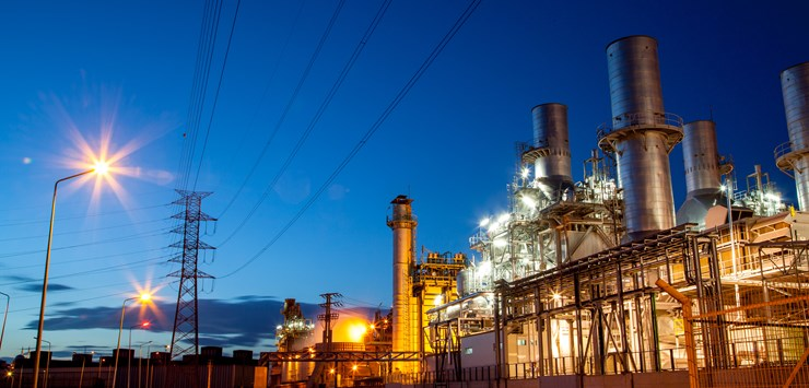 Elecnor clinches contract to build biomass-fuelled power